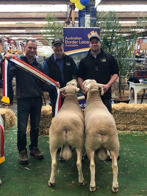 2018 RAHS 1st prize Export Pair