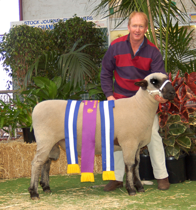 res-supreme-allbreeds2008_with-ribbons